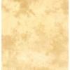 Фон тканевой для фотостудии LASTOLITE Arizona (3x3,5м) (7754)