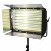 Постоянный студийный свет F&V RDG-06 1650W 6x55W
